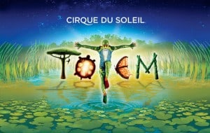 totem-circo-sol-2018