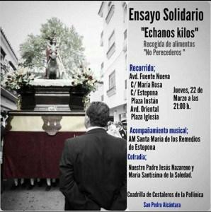 ensayo solidario1