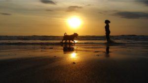 playa caninas