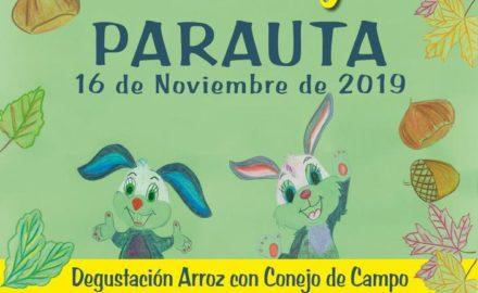fiesta del conejo parauta