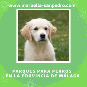 parques caninos malaga