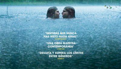 cine club buñuel