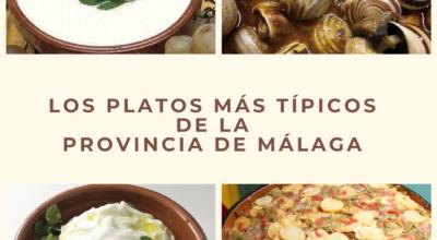 platos tipicos