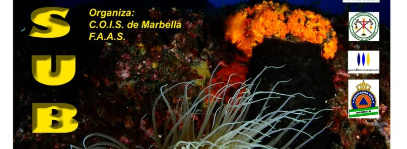 fotografia marbella