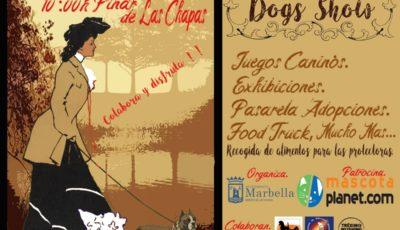 show canino